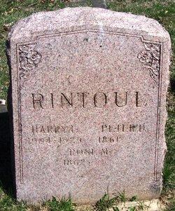 Peter David Rintoul