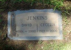 David Clifton Jenkins