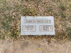 Henrietta Birch