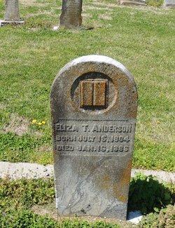 Eliza T Anderson