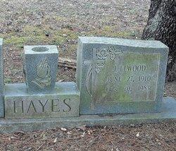 John Elwood Hayes