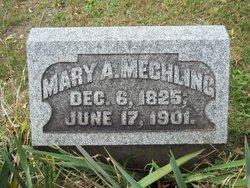 Mary Ann <I>Eicher</I> Mechling