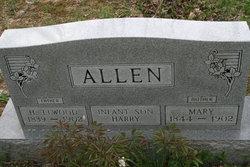 Mary Elizabeth <I>Grissom</I> Allen