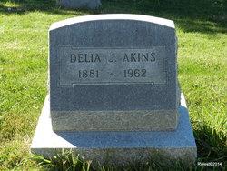 Delia <I>Johnson</I> Akins