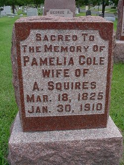 Pamelia Cole <I>York</I> Squires