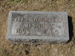 Alice Clara <I>Clarson</I> Starkey