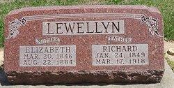 Elizabeth Lewellyn