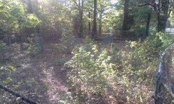 Ausley Pipkin Cemetery