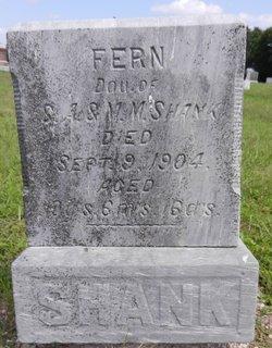 Fern Shank