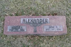Dave N. Alexander