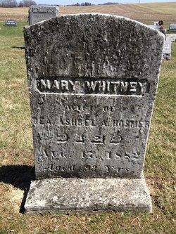 Mary <I>Whitney</I> Hosmer