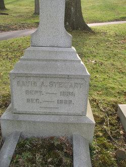 David A Stewart