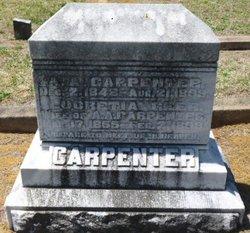 Albert Alexander Carpenter