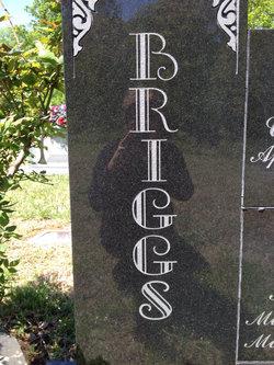 Barbara Ann Briggs