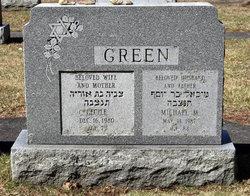Michael Martin <I>Greece</I> Green