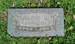 Rosa <I>Kunz</I> Bindbeutel