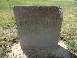 Mary <I>Hicks</I> Bradley