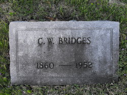 Charles Walter Bridges