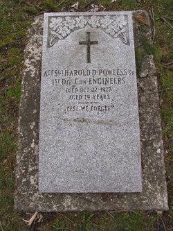 Sgt Harold Dean Powless Sr.
