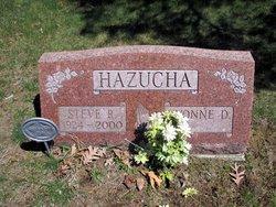 Steve R. Hazucha