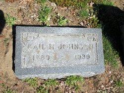 Gail H. <I>Maxfield Dilley</I> Johnson