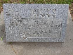Albert J. Riggs
