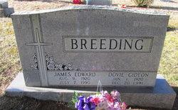 Dovie <I>Gideon</I> Breeding