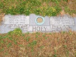 Walter J. Hoey Sr.