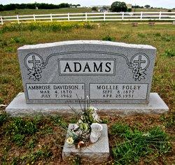 Ambrose Davidson Adams, I