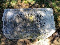 Sylvester Hosner