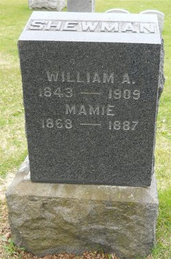 William Shewman