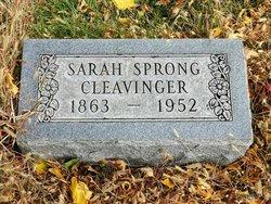 Sarah Cole <I>Sprong</I> Cleavinger