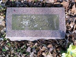 Edward A. Hinz