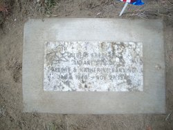 Albert Frederick Banning