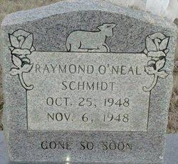Raymond O'Neal Schmidt