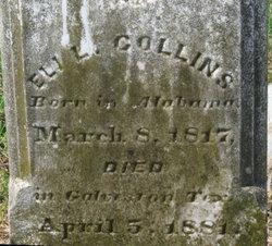 Eli Collins