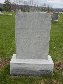 Mary <I>Butt</I> Ansel