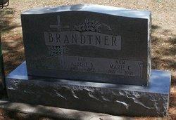 Albert B Brandtner