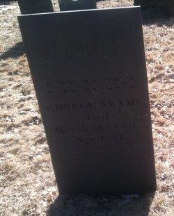 George Adams, Sr