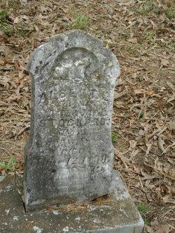 Albert L. Stockard