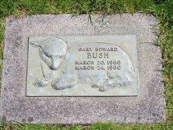 Gary Edward Bush