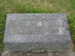 Rudolph F Wilke