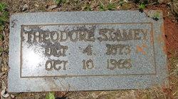 Theodore D Stamey