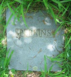Mollie Grace <I>Jones</I> Perkins