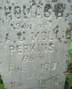 Thomas B Perkins