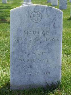 Maurice Afraid Of Hawk