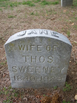 Jane Brown <I>Codd</I> Sweeney