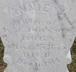 Annie Jane <I>Singleton</I> Johnson