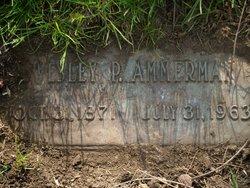 Wesley P. Ammerman