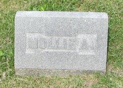 """Mary A. """"Mollie"""" <I>Elkin</I> Compton"""